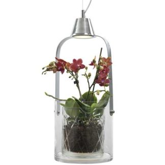 Gro blomsterpendel glass/krom