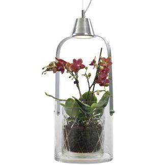 Gro blomsterpendel glass/krom